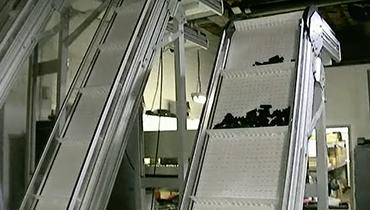 12) Incline Conveyor