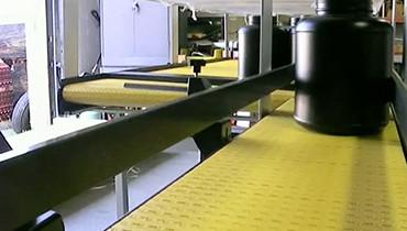 69) Singulating Conveyor