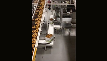 112) Long Line Food Conveyor
