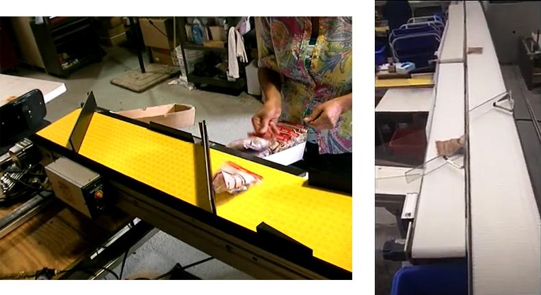 Modular Sorting Conveyor Systems