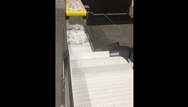 204) batch counting z conveyor