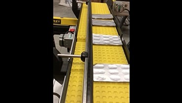 231) Adjustable conveyor system guide rail