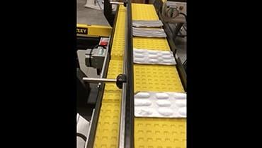231) Adjustable conveyor system guide rail