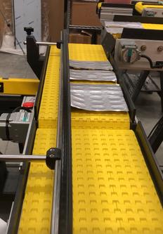 box filler conveyor for blister packaging