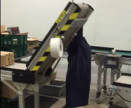 Food packaging conveyor with accumulation and lift gate