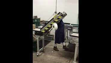 241) accumulation gate conveyor system