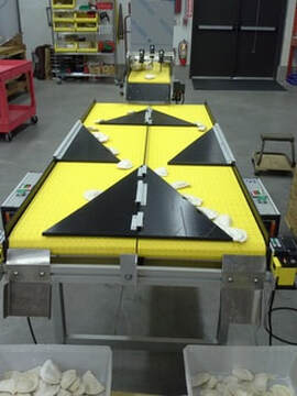 conveyor systems - USA Company manufacturing dual hopper counting conveyors