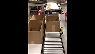 262) singulating counting packaging conveyor