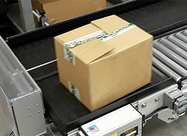280) box filler counting conveyor