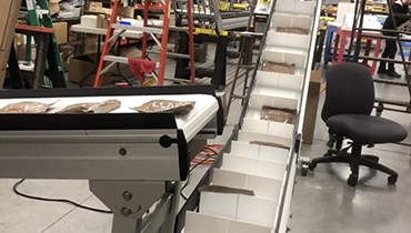 295) elevator – box filler conveyor with infeed