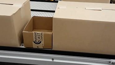 294) Multi lane accumulation packaging conveyor