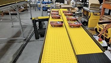 321) portable multi lane circulating conveyor system